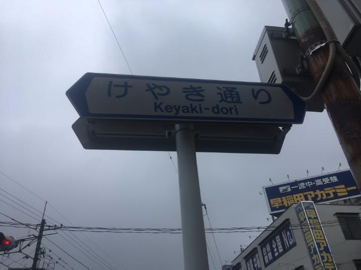 東川口駅 けやき通り