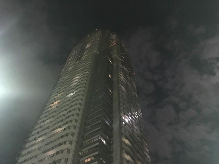 エルザタワー