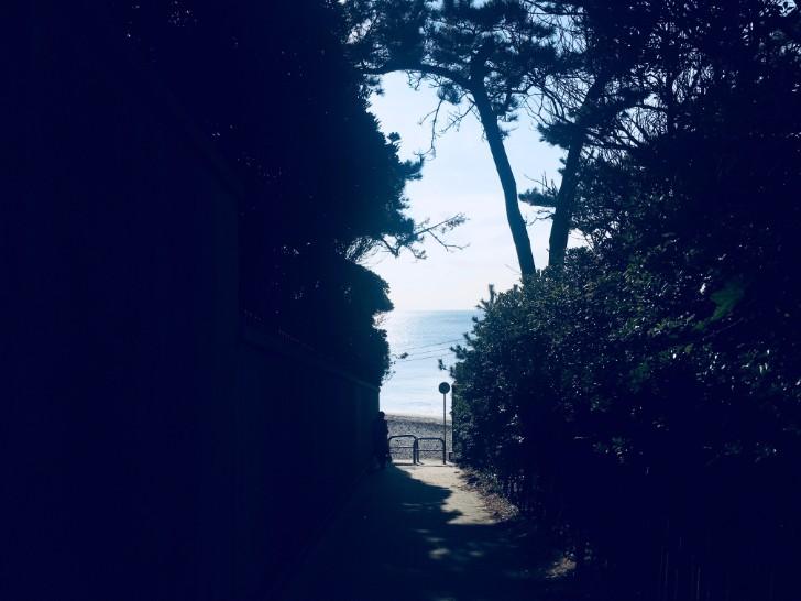一色海岸への道