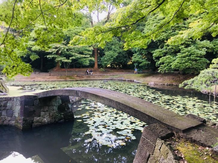 小石川後楽園:内庭