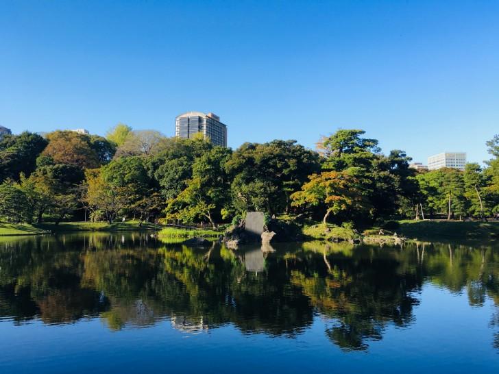 小石川後楽園:紅葉林からの眺め