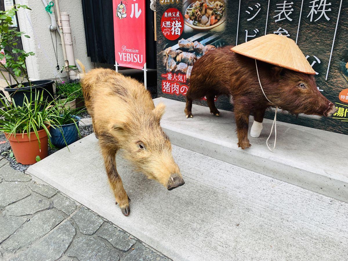 じんじんばあ猪